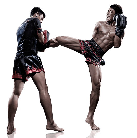 How to Kick (in Martial Arts) forecast