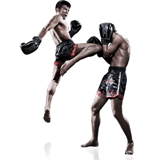 """muay thai The next edition of muaythai promotion """"thai fight"""" will be held on saturday  august 25th  the world muaythai council under royal patronage and ifma the ."""