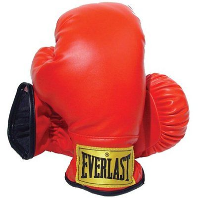 2. Everlast Youth Boxing Gloves