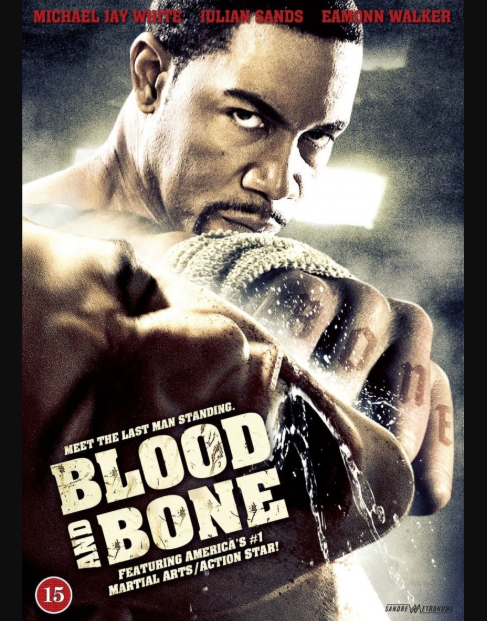 Blood and Bone best fighting movies